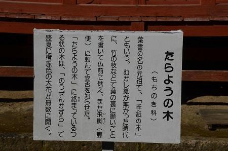 20170121行元寺 毘沙門天21