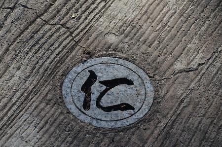 20170126伏姫籠穴22