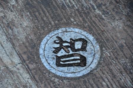 20170126伏姫籠穴25