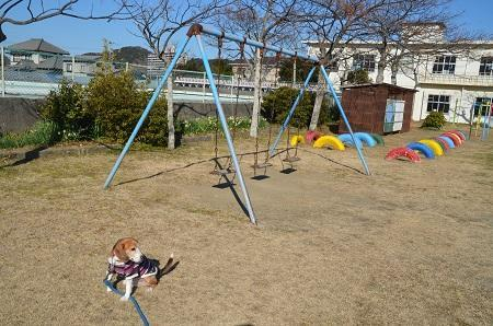 20170126岩井小学校11