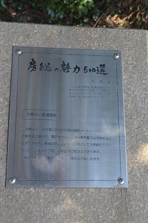 20170126大房岬自然公園03