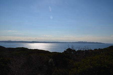 20170126大房岬自然公園11