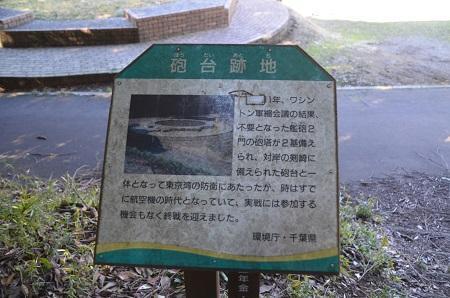 20170126大房岬自然公園14