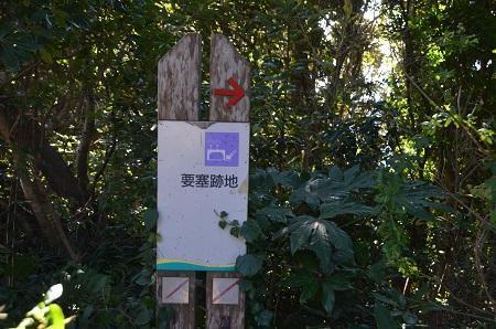 20170126大房岬自然公園30