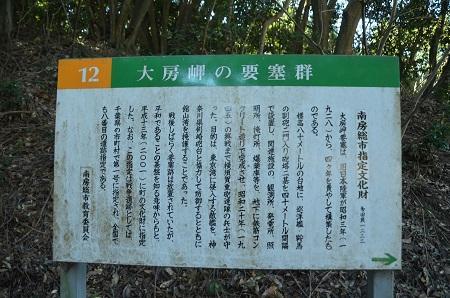 20170126大房岬自然公園35