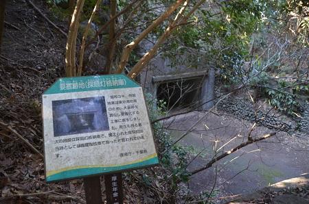 20170126大房岬自然公園31