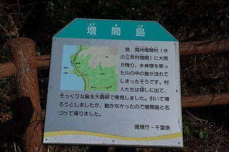 20170126大房岬自然公園41
