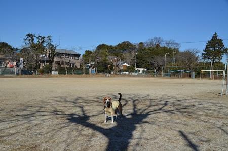 20170131小文間小学校20