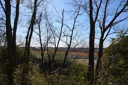 20170131利根川の眺望②07