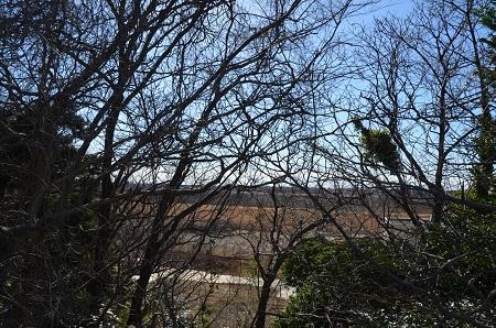 20170131利根川の眺望②19