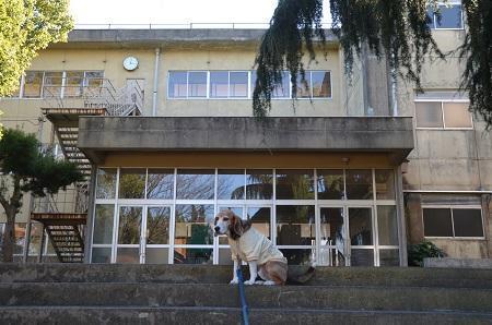20170131白山西小学校20
