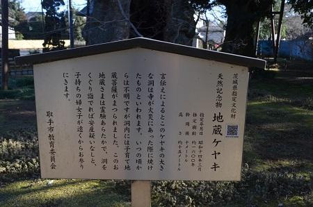20170131地蔵ケヤキ05