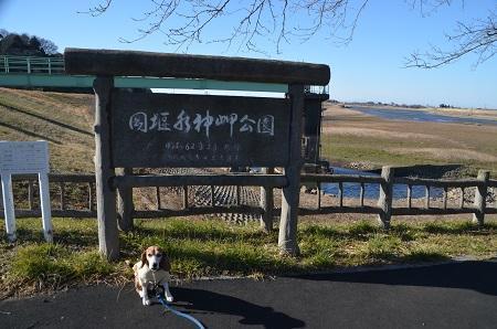 20170131岡堰水神岬公02