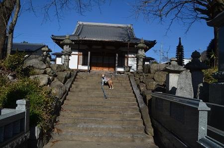 20170206茨木百景 伝正寺と真壁城址24