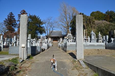 20170206茨木百景 伝正寺と真壁城址23