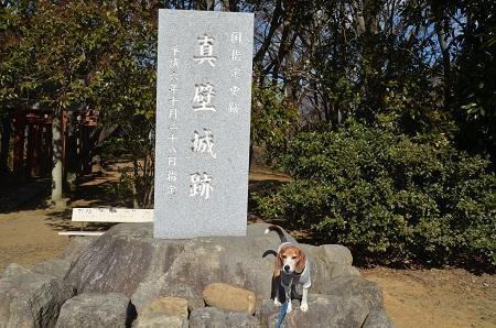 20170206茨木百景 伝正寺と真壁城址20