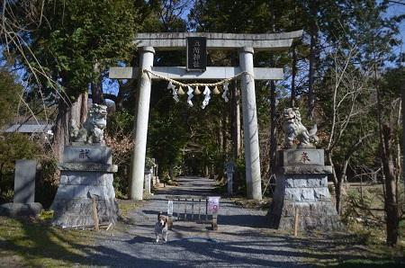 0170206五所駒瀧神社04