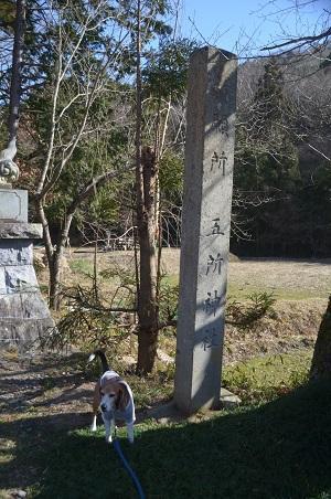 0170206五所駒瀧神社03