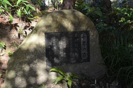0170206五所駒瀧神社11