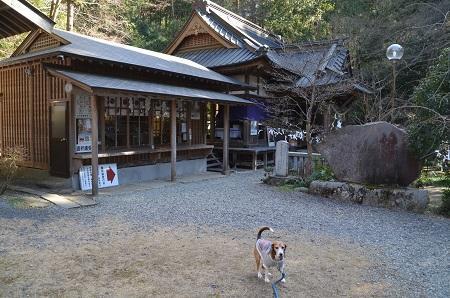 0170206五所駒瀧神社18