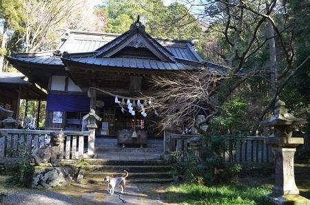 0170206五所駒瀧神社16