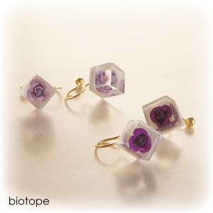 キューブ紫