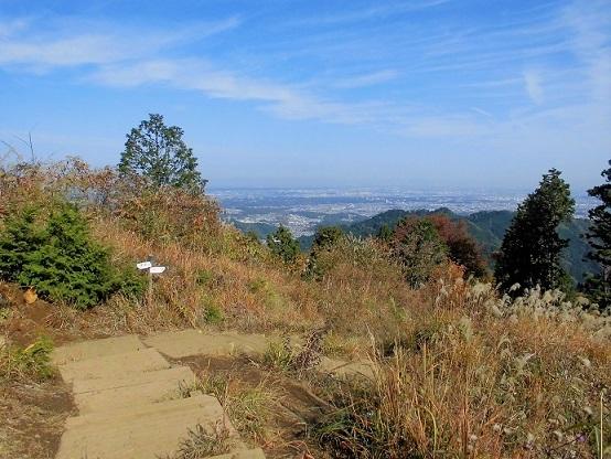 16.11.17ハイク 景信山~高尾山 (29)