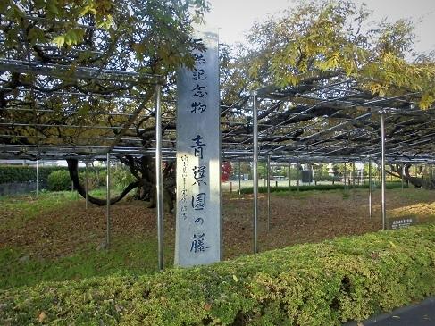 16.12.4 ブログ用 青葉園ほか (8)