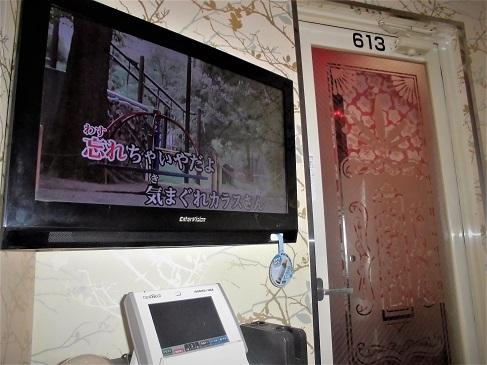 16.12.15 カラオケ錦糸町、フィギュア秋葉原 (49)