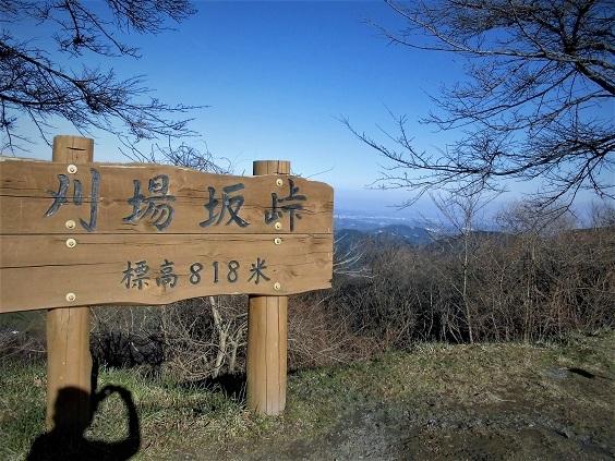 16.12.18 ハイク・旧正丸峠~刈場坂峠1) (66)