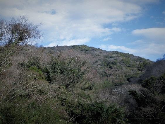 17.1.3 大楠山 (70)
