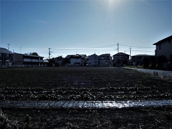 17.1.11 地震雲 (14)