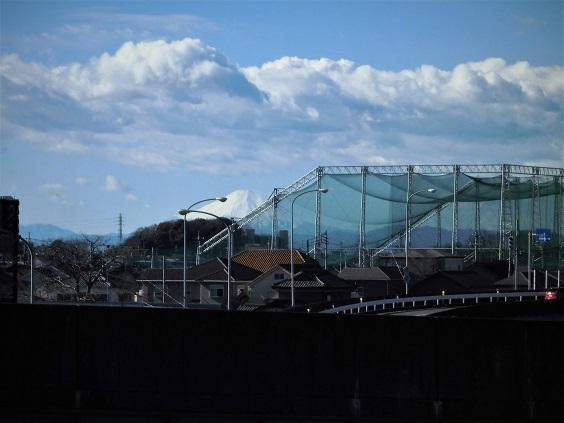 17.1.17 散歩の風景。富士  (9)