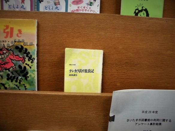 17.1.28 満州国演義⑦ テンカラ釣り日記  (11)