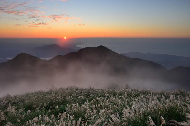 霧とススキ(2)
