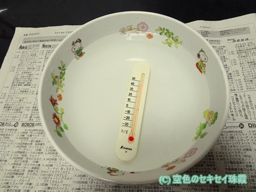 50℃弱のお湯 空色  空色のセキセイ珠霞