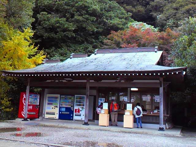 ノコギリ山001_edited-1