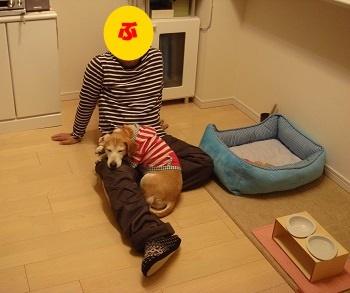 16_12_24_01.jpg