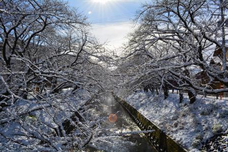 2017積雪1