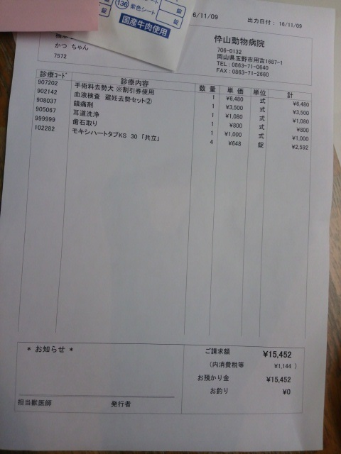 DCIM9351.jpg