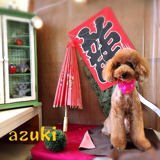 asuki 本山
