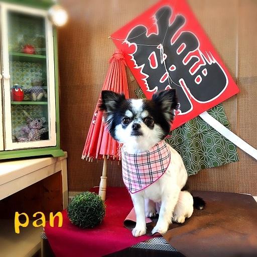 pan 平尾