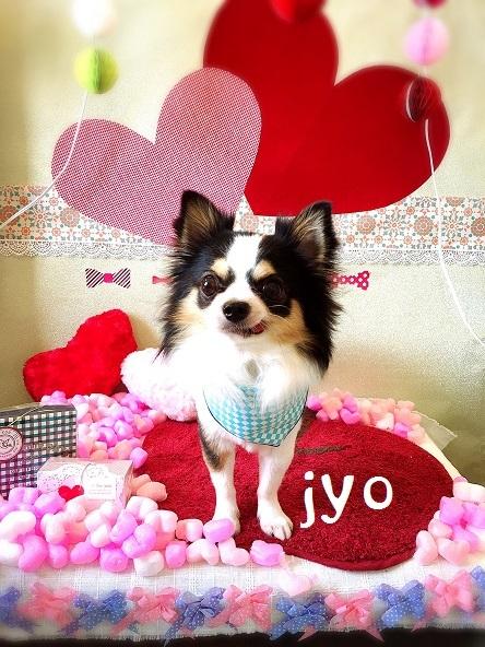 jyo 山本