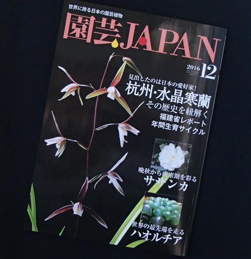園芸ジャパン1