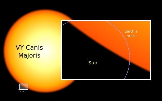 640px-Sun_and_VY_Canis_Majoris.jpg