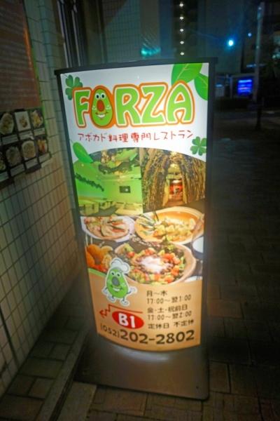 FORZA001.jpg