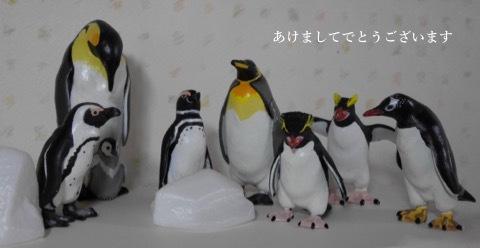 ペンギン8