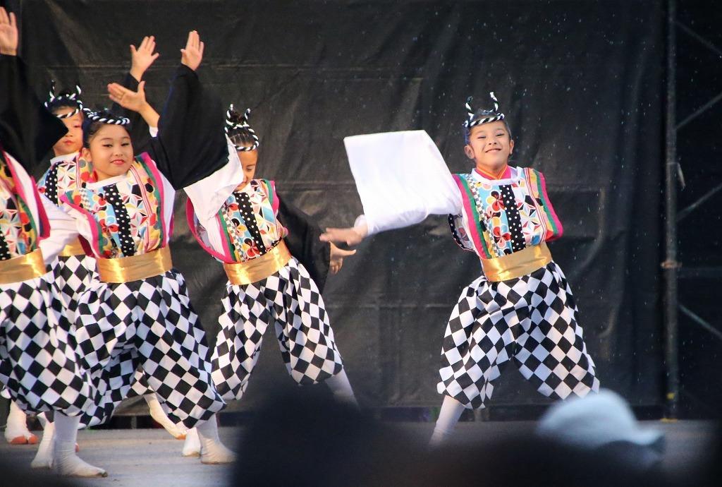sakura koiyajushou 8