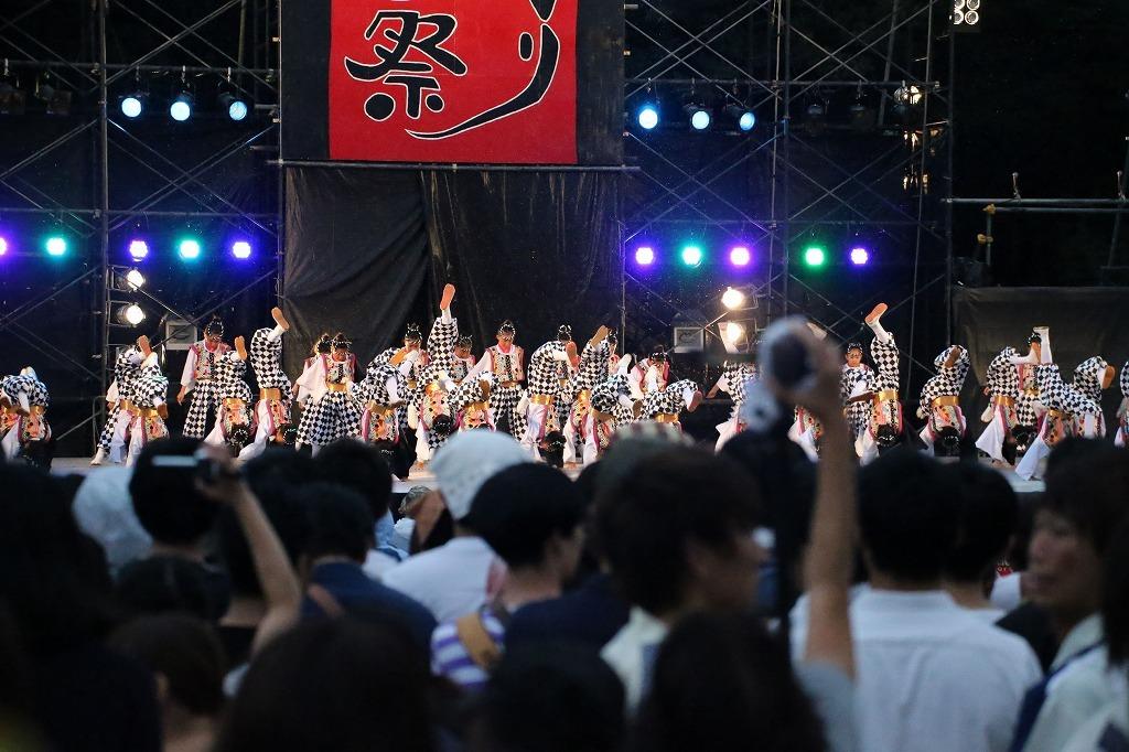 sakura koiyajushou 12