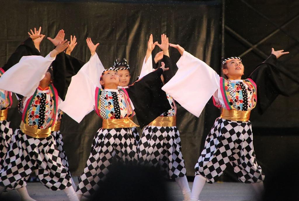 sakura koiyajushou 81
